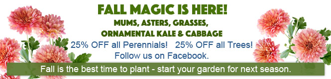 We have everything you need for your garden.